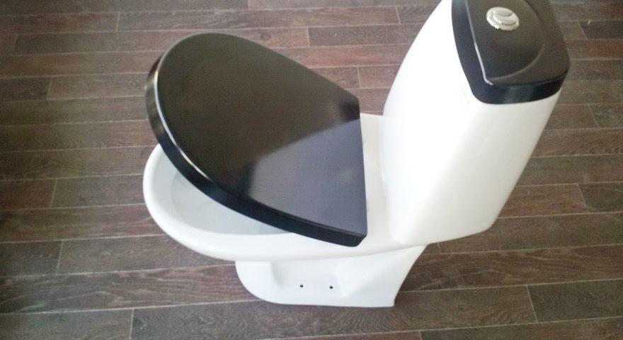 Выбираем крышку для унитаза. Как подобрать нужный стульчак.